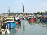 Whitstable Harbour Oyster Farms Image